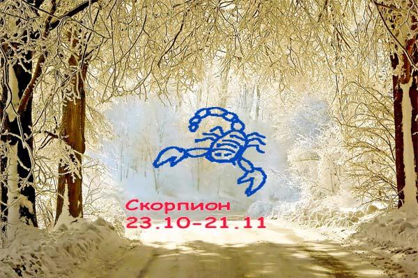 Козерог девушка гороскоп на декабрь 2018