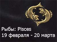 zod-12.jpg